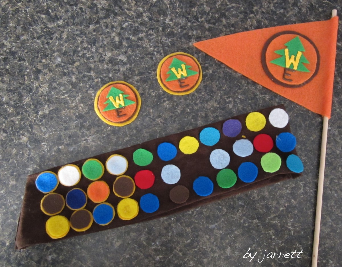 3 Wilderness Badges complete and the beginning of the badges of the sash