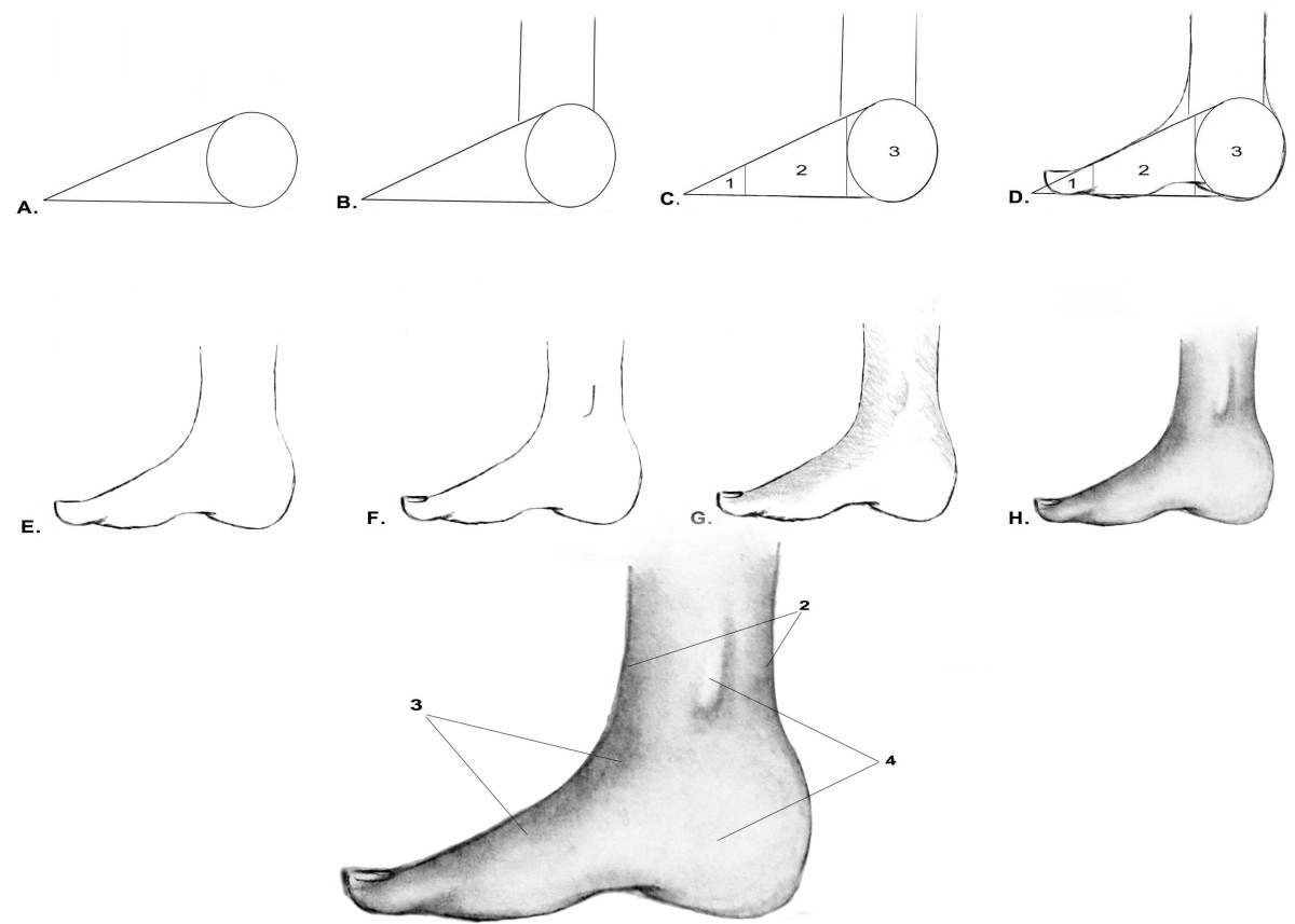 drawing-the-human-figure-the-feet