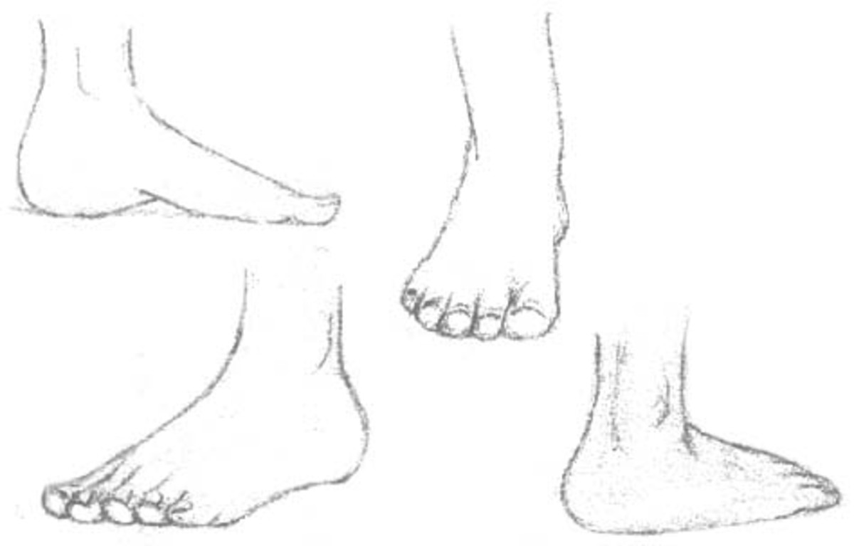Drawing the Human Figure: The Feet