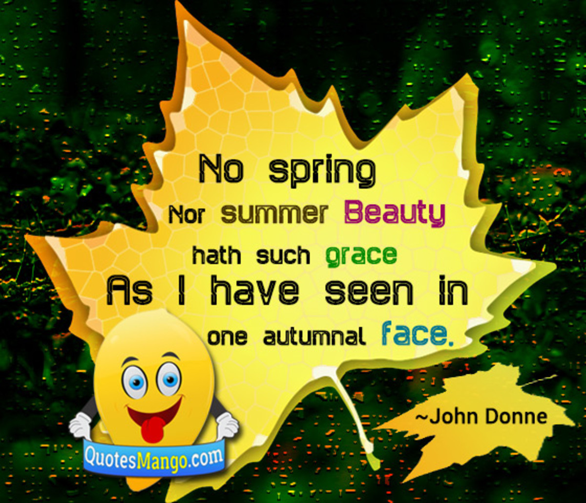 John Donne's Love Poetry