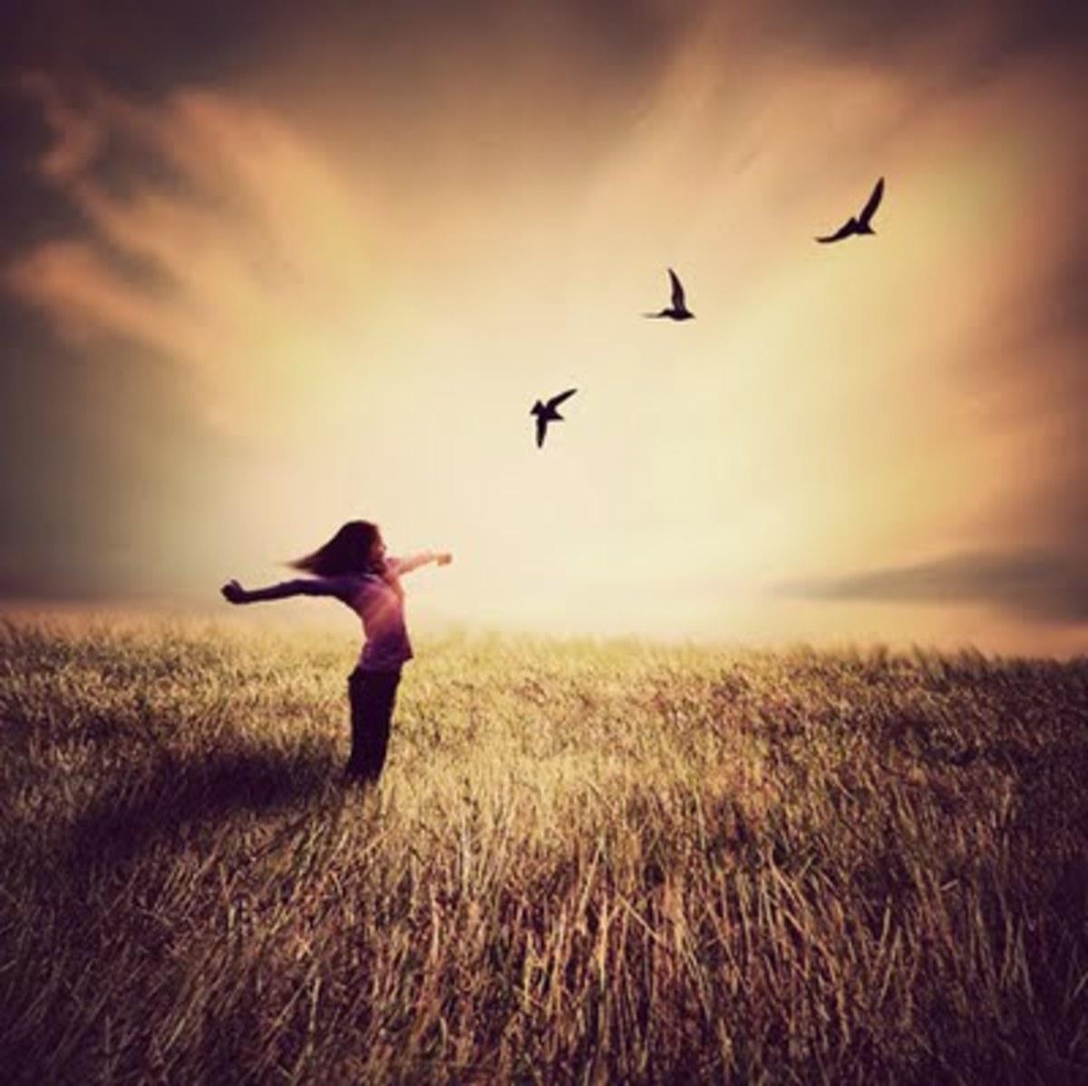 living-an-envy-free-life