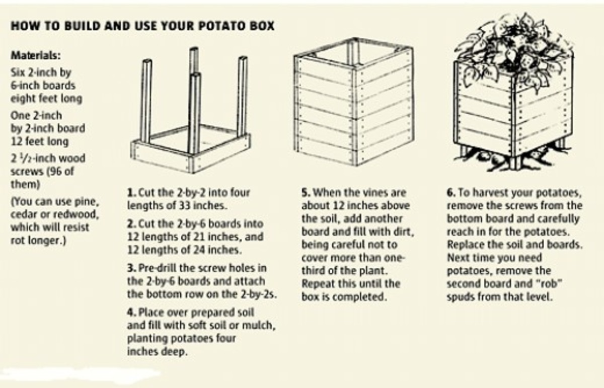You can build a potato grow box and use up only a 4ft. X 4ft. square of space for it and if you use good quality soil you will end up with a huge crop of potatoes.
