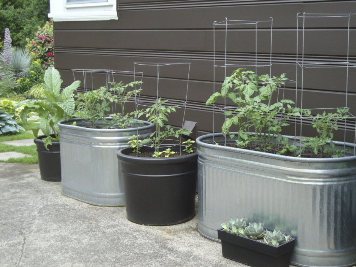 How to do vegetable gardening in containers hubpages - Soil for container vegetable gardening ...