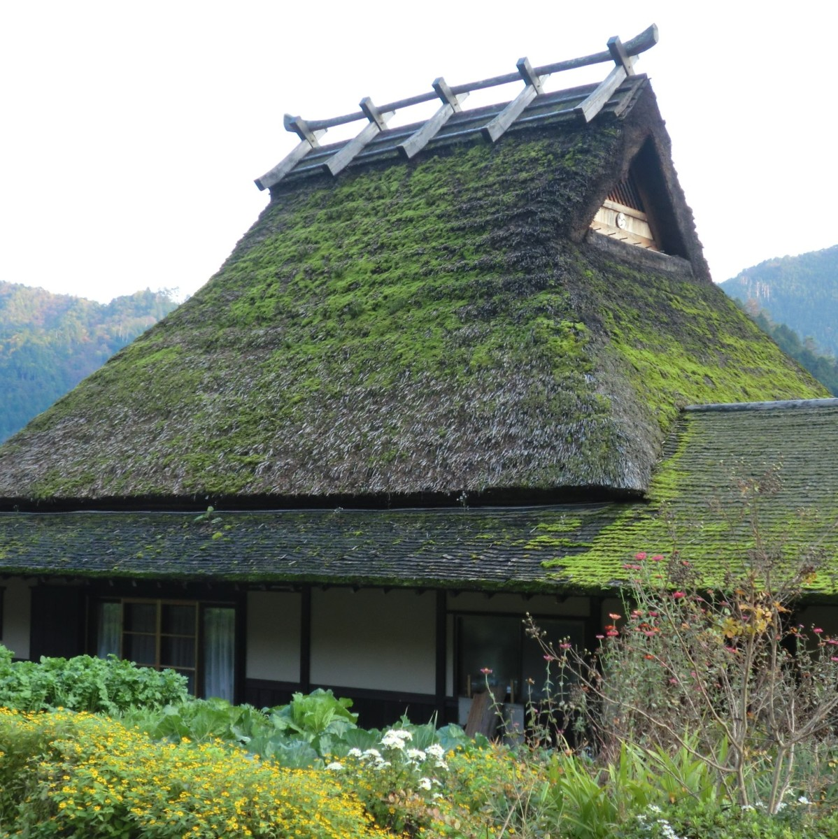 A minka: traditional Japanese home