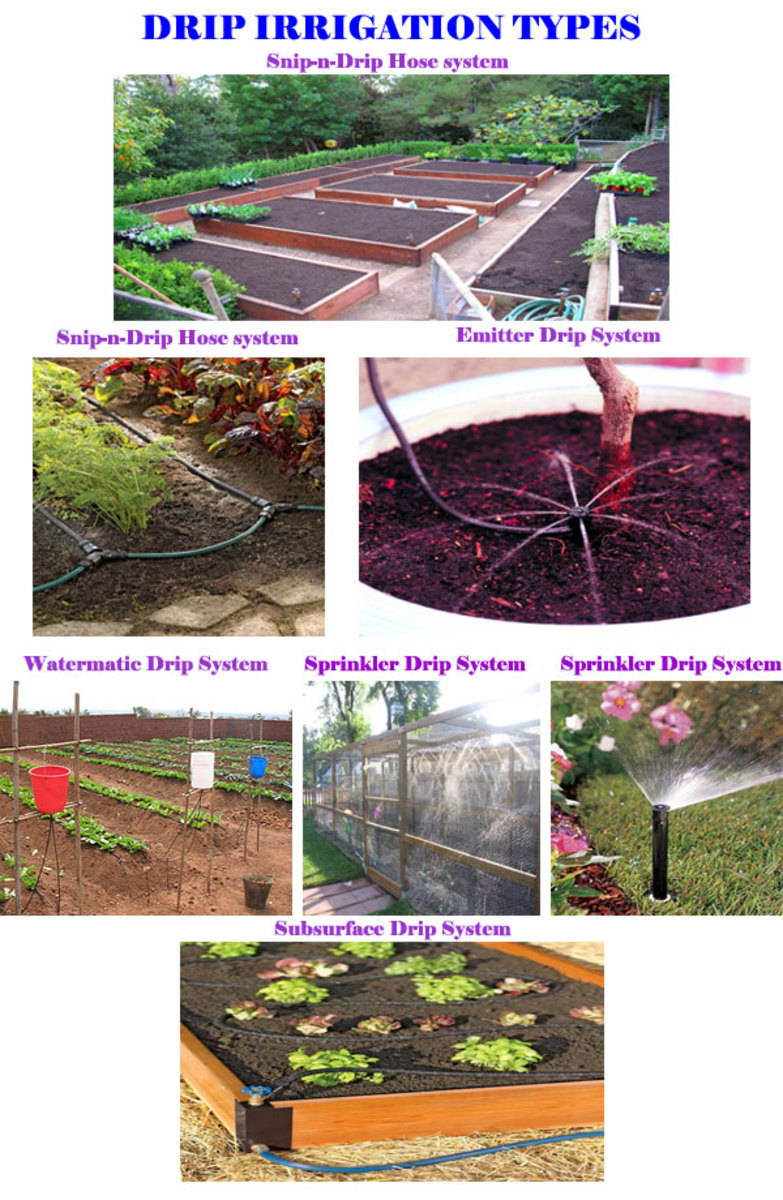 Different Drip Irrigation Systems