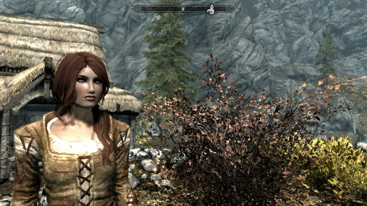 My new Breton mage created using the Race menu mod, ready to explore Skyrim. Picture courtesy of Skyrim Nexus, Bethesda and Zenimax.
