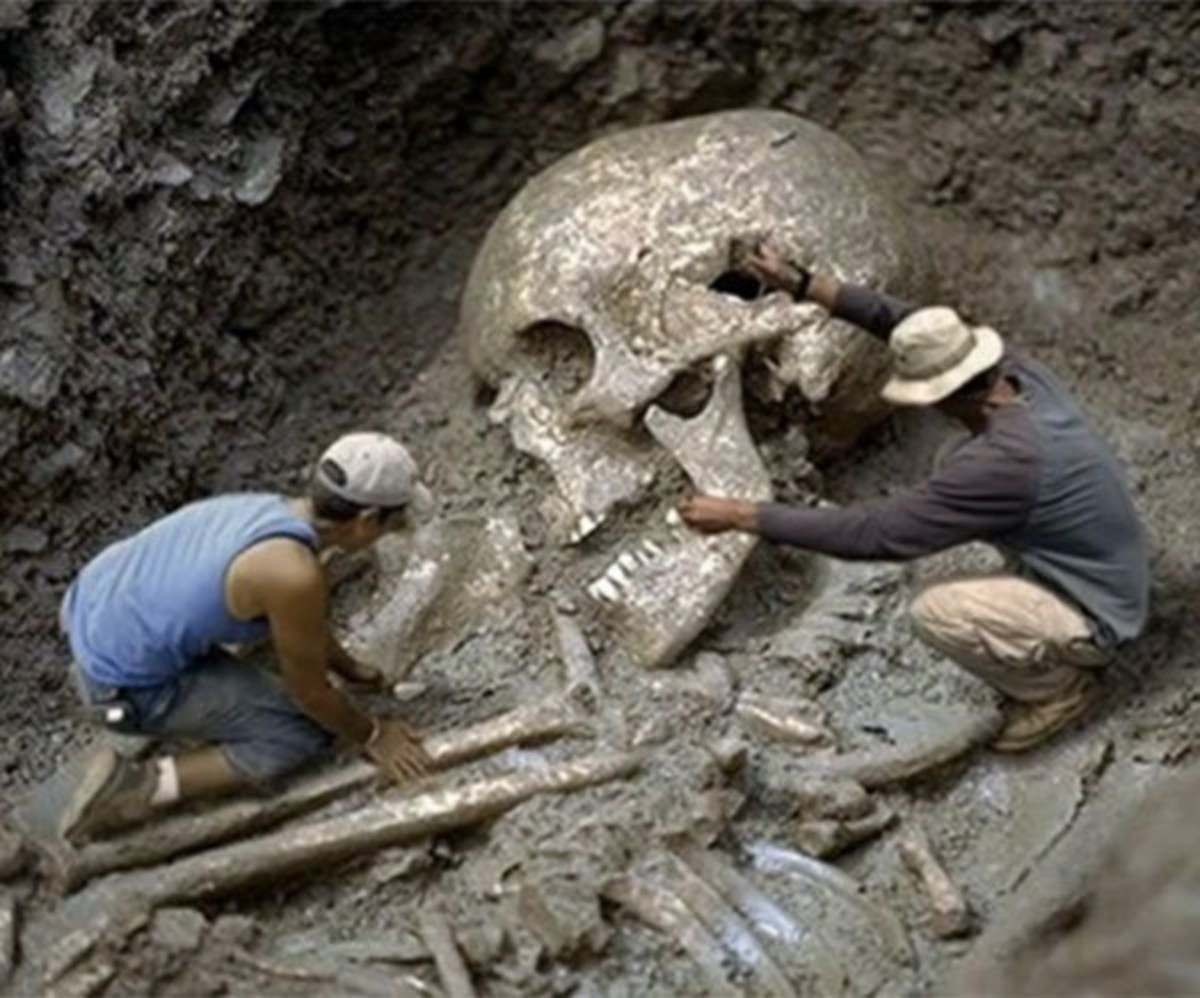 The are over 300 documented cases investigated and excavated by the Smithsonian Institute in the United States of giant skeletal remains.