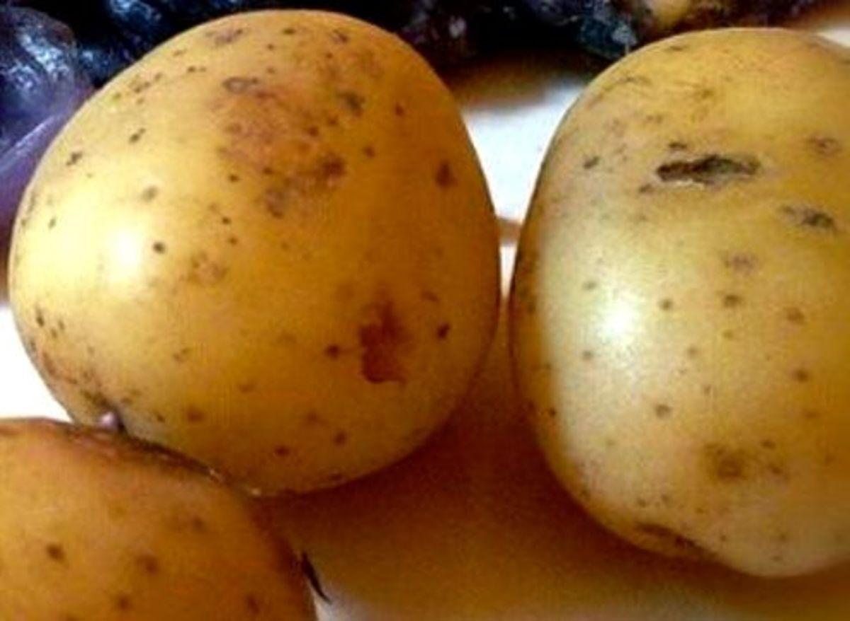 Aloo (Potatoes)