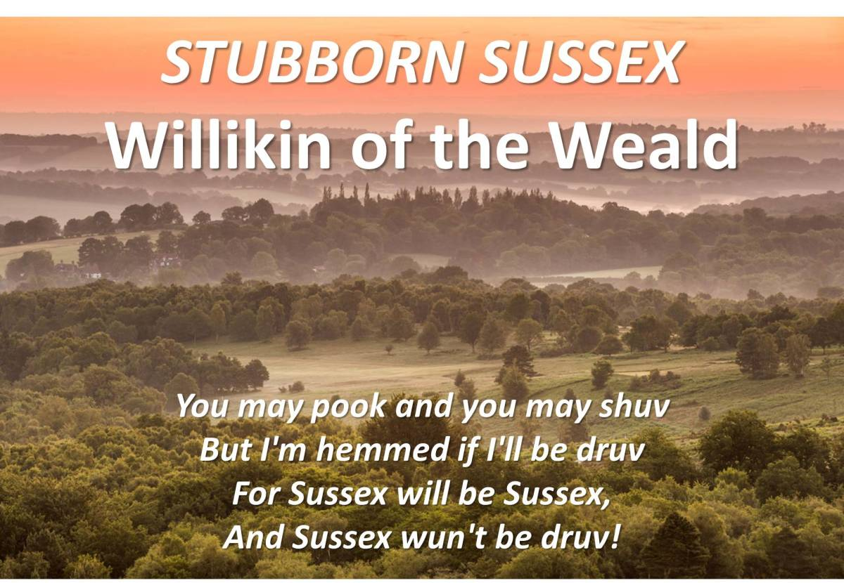 Stubborn Sussex: WILLIKIN OF THE WEALD