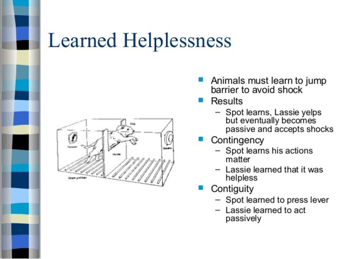 impact-of-learned-helplessness