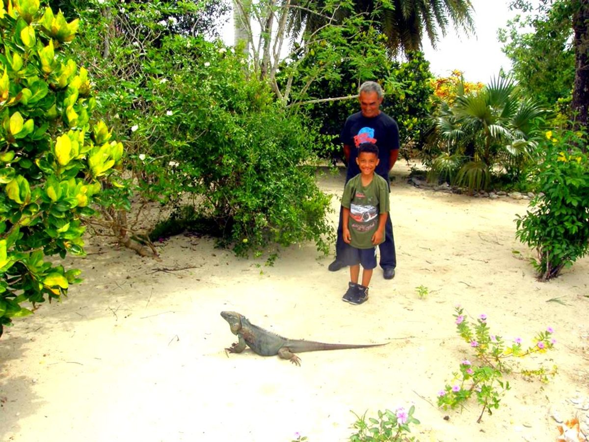 My youngest son with a blue iguana