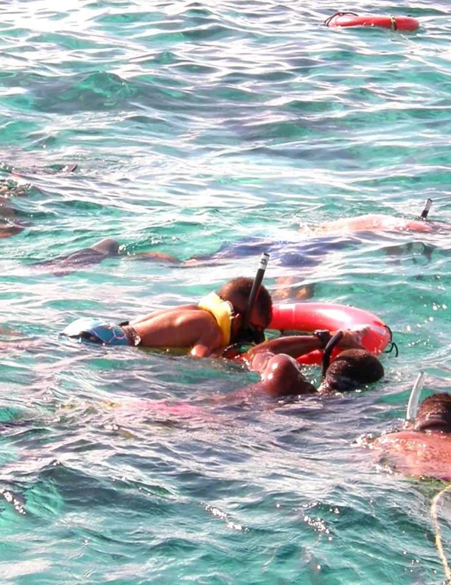 My youngest son, snorkeling close to Stingray City Sandbar
