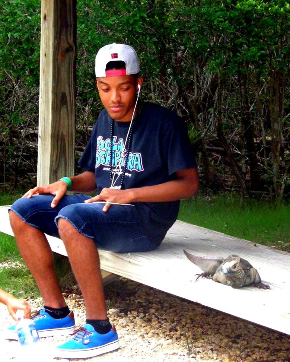 My oldest son, just hanging out with one of the blue iguanas.