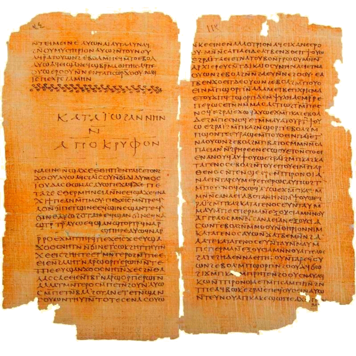 A section of the Nag Hammadi Codex.
