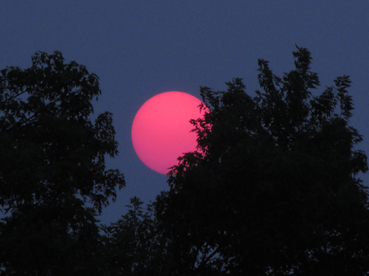 While I may never know what this image is I captured in the summer of 2015, it doesn't look like any photo I have ever seen of our Sun.
