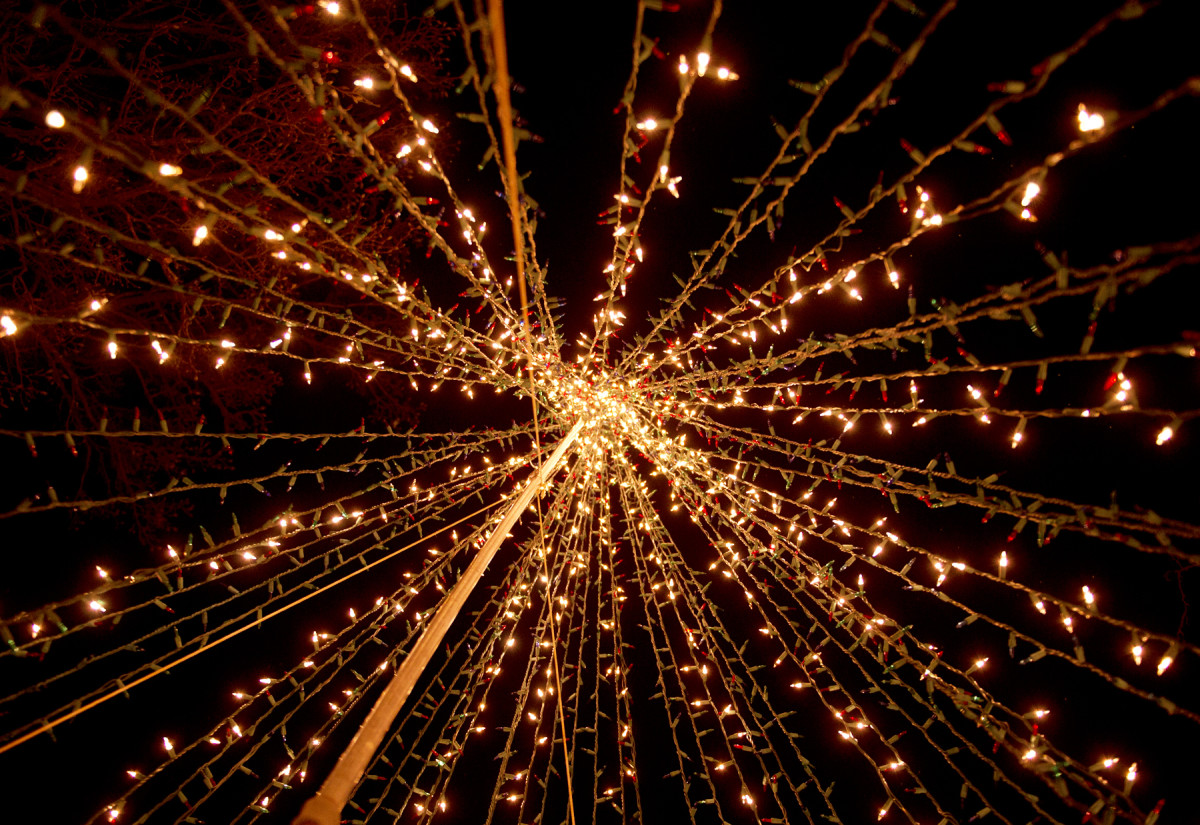 Christmas lights from below