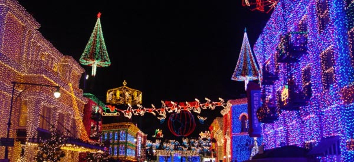 Christmas lights at Disney World