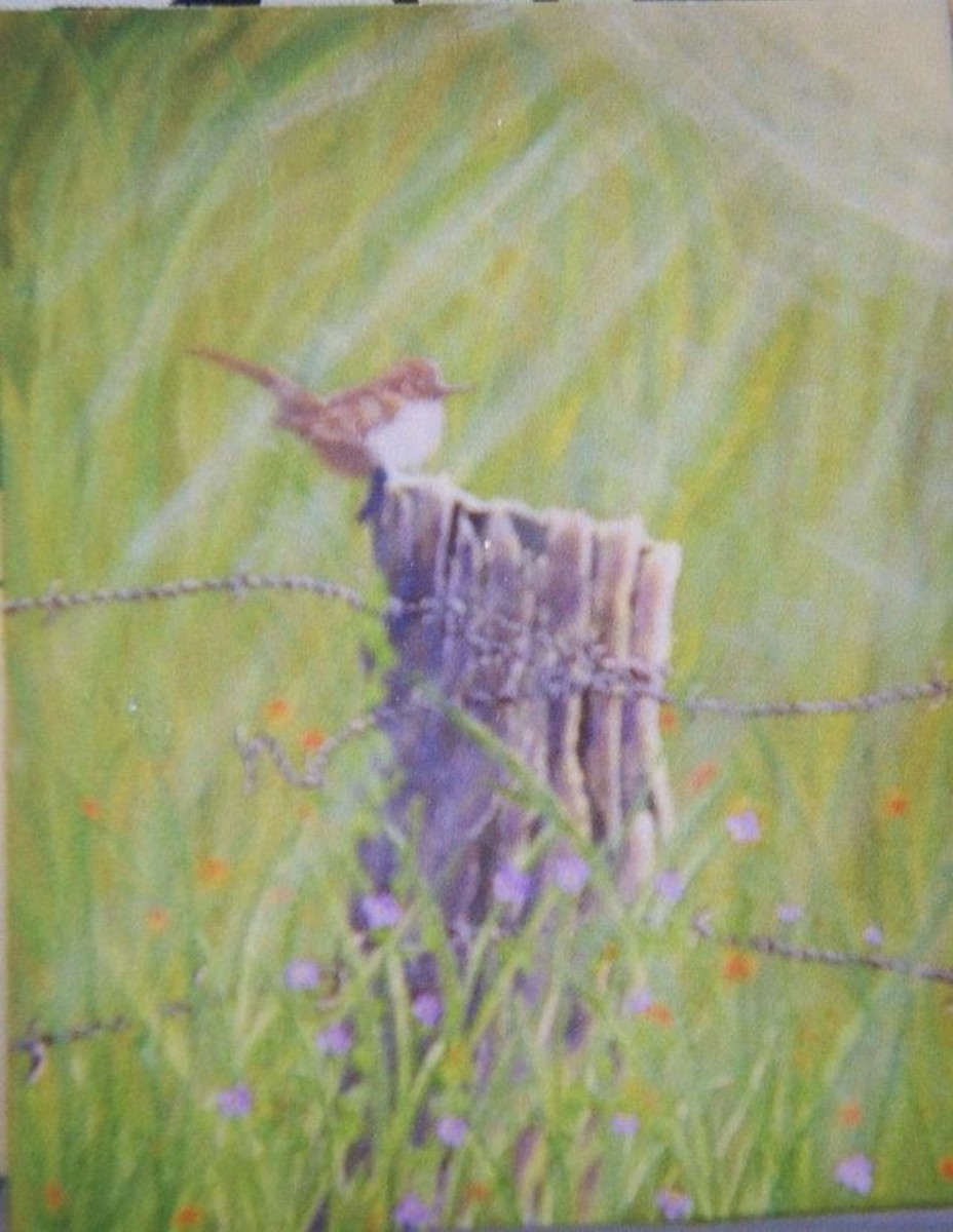 Wren on an old fence post. Acrylics and dry brushing paint.