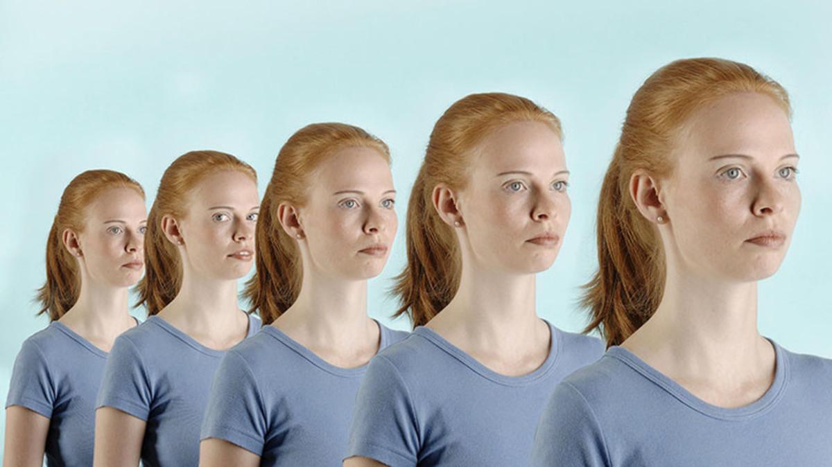 Human Cloning According to Rudolf Jaenisch