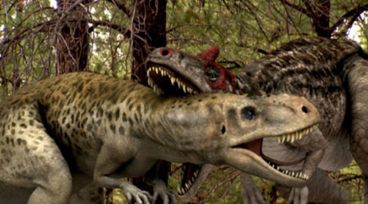 (cc image, Pinterest) Allosaurus (left) Fighting a Ceratosaurus (right)