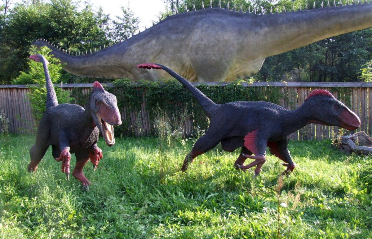 (cc image, Wikimedia Commons) Utahraptor, the Largest in the Raptor Genus