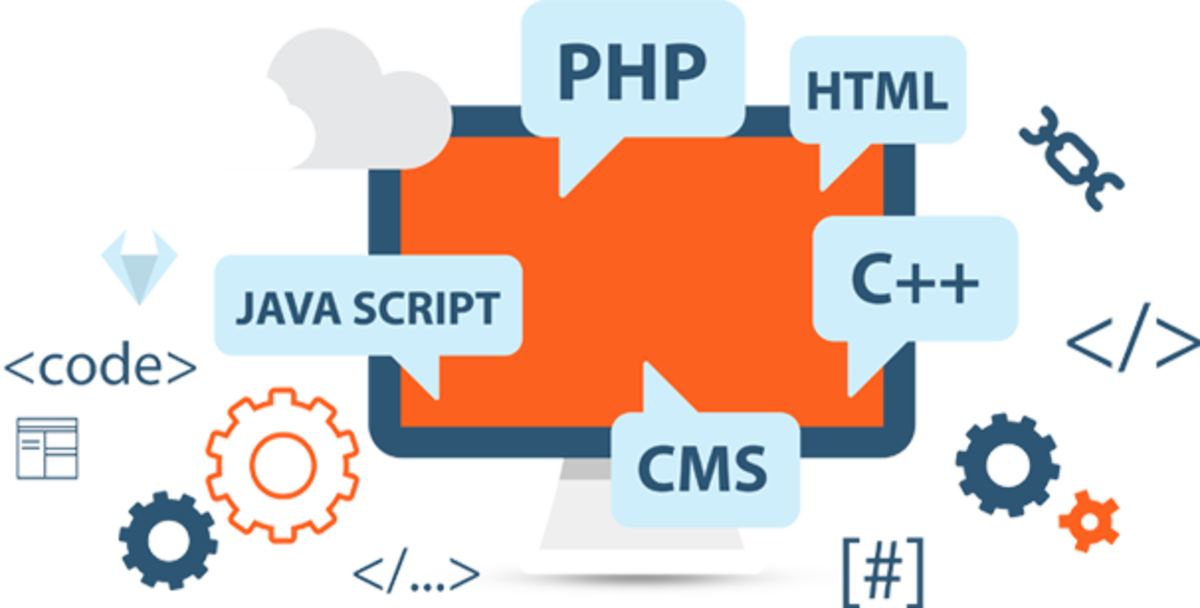Top 5 Websites to Learn Web Development