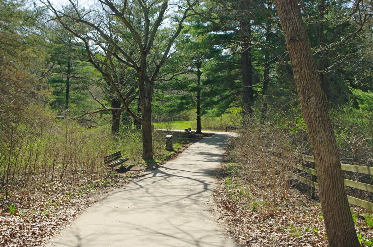 Starved Rock pathway