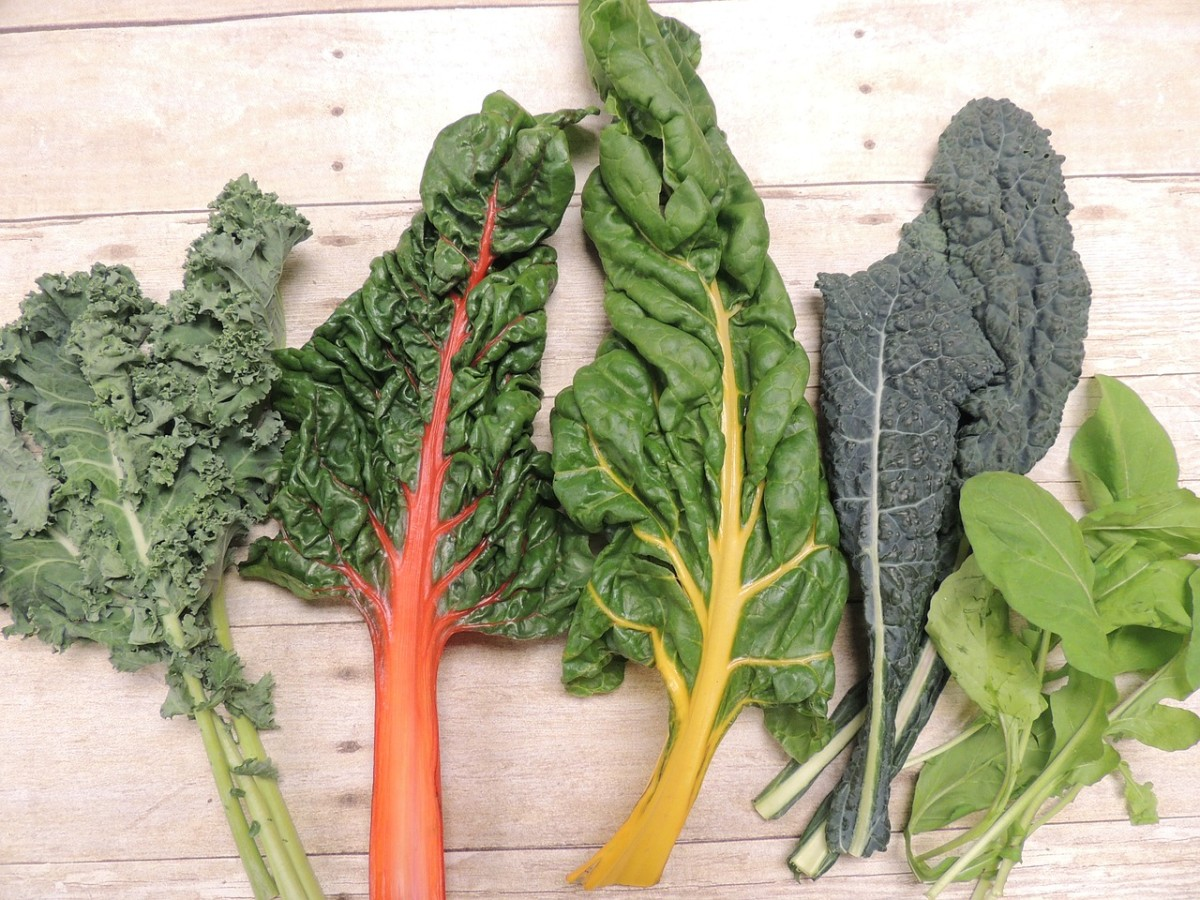 30 Common and Exotic Leafy Green Healthy Vegetables