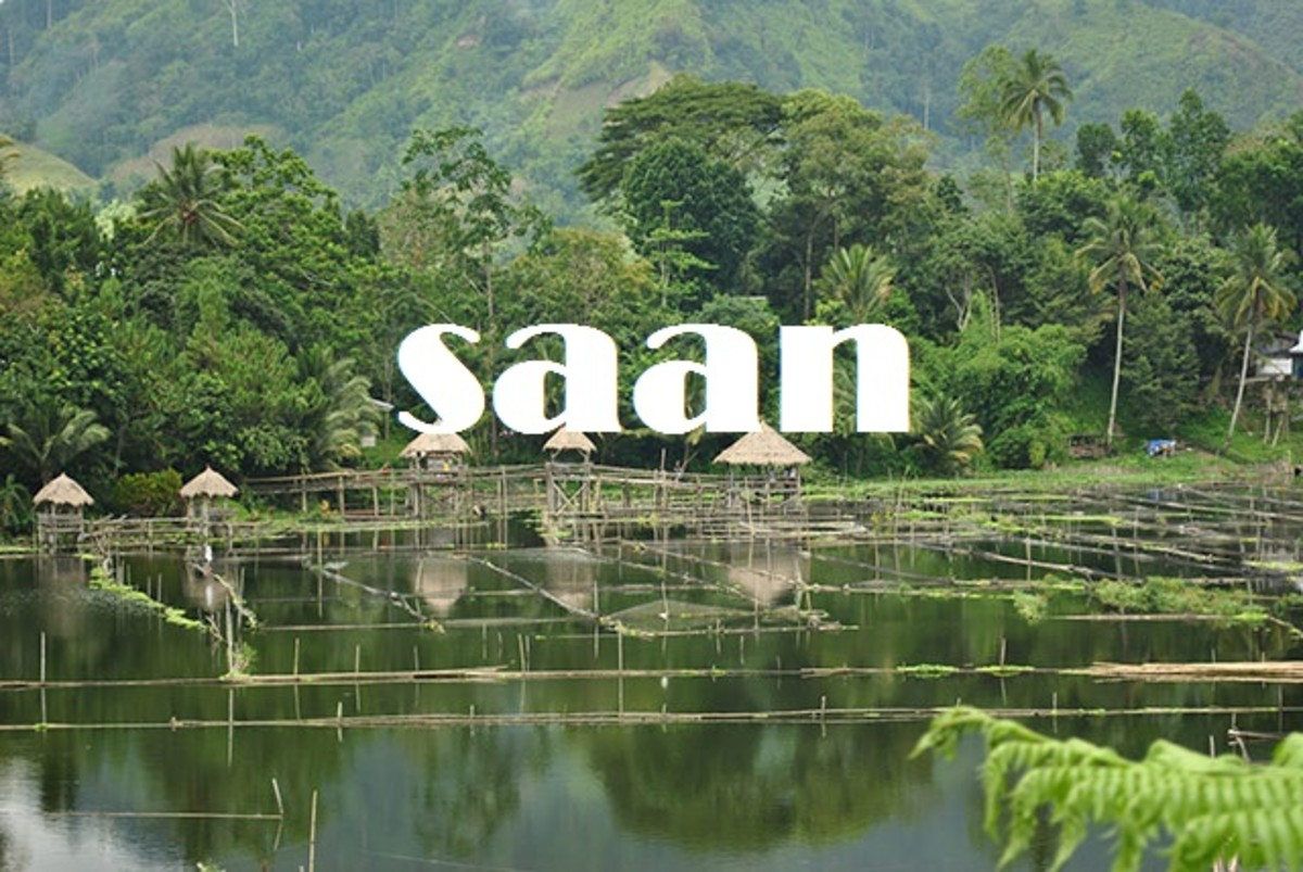 Saan (no/not).