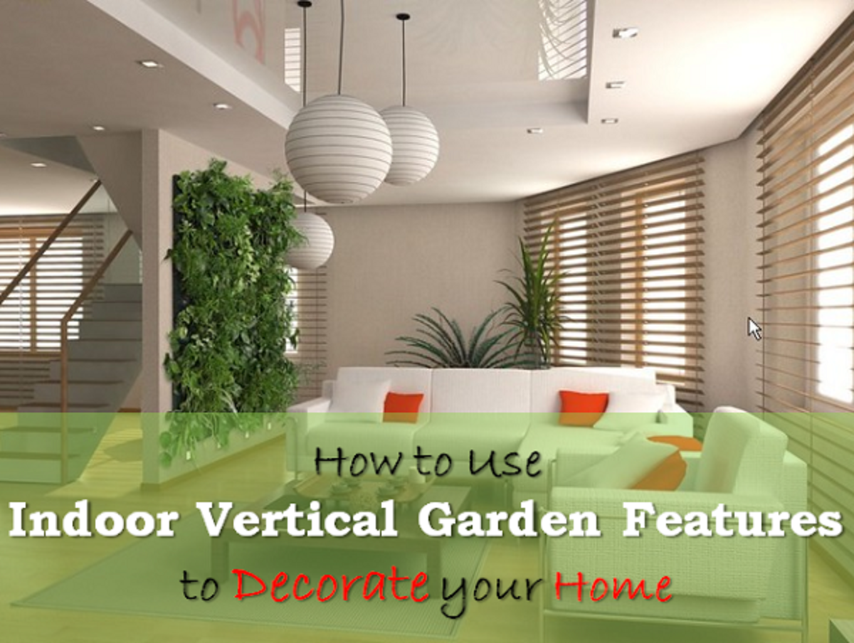 Indoor Vertical Gardens and Plant Walls