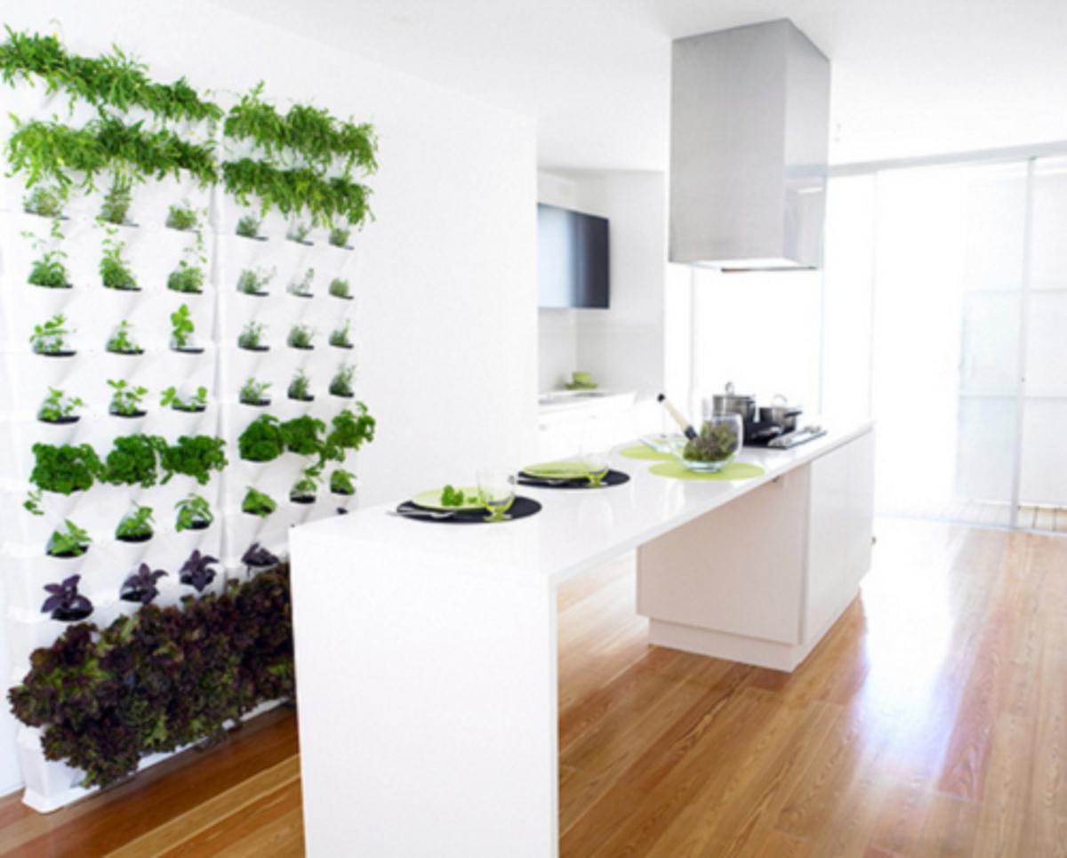 An indoor vertical garden installed in the breakfast area of a kitchen.