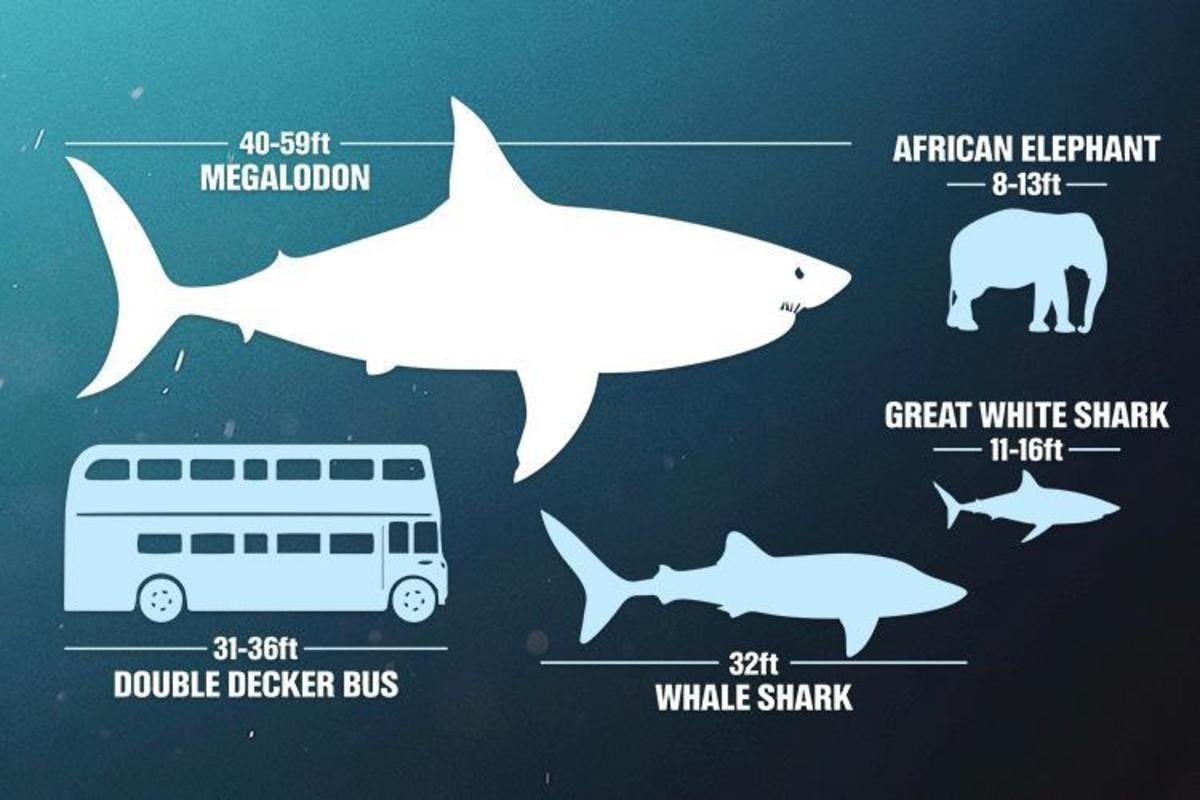 prehistoric-animals-and-their-modern-counterparts