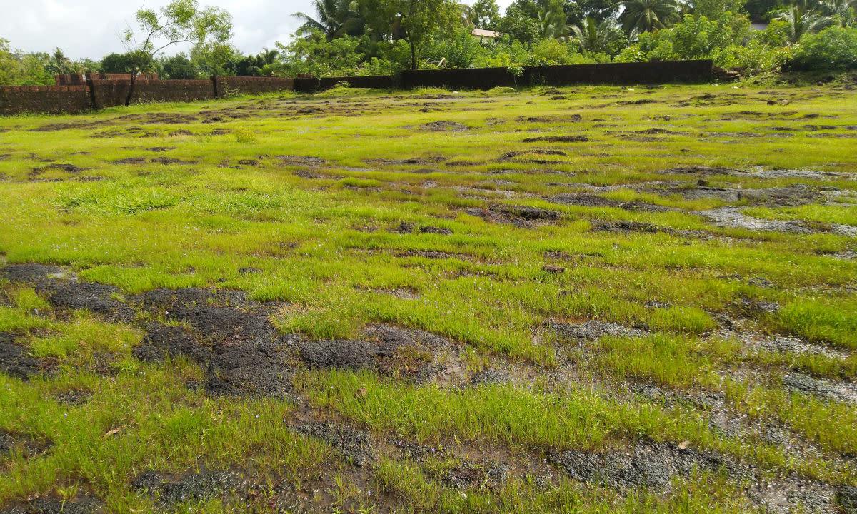 Igneous laterite rocky rain-fed catchment area