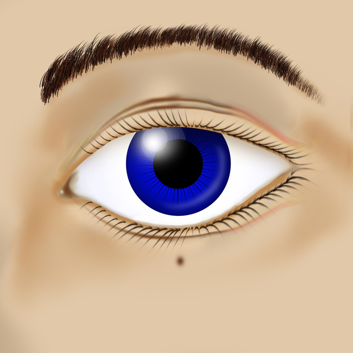 Image of a blue eye