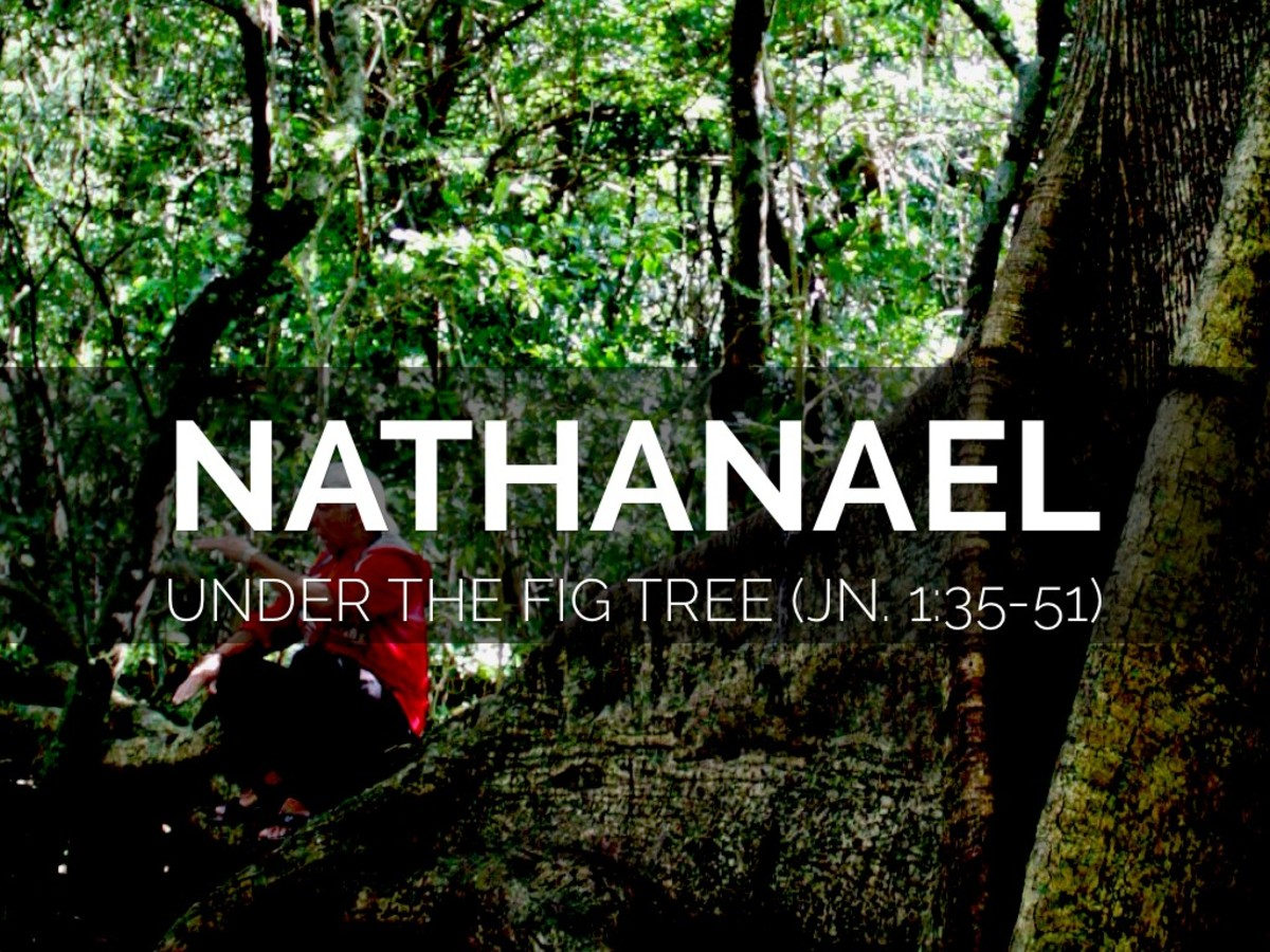 Traditionally believed to be literally under a tree when Jesus saw Nathanael, we now understand the fig tree reference to be a metaphor.