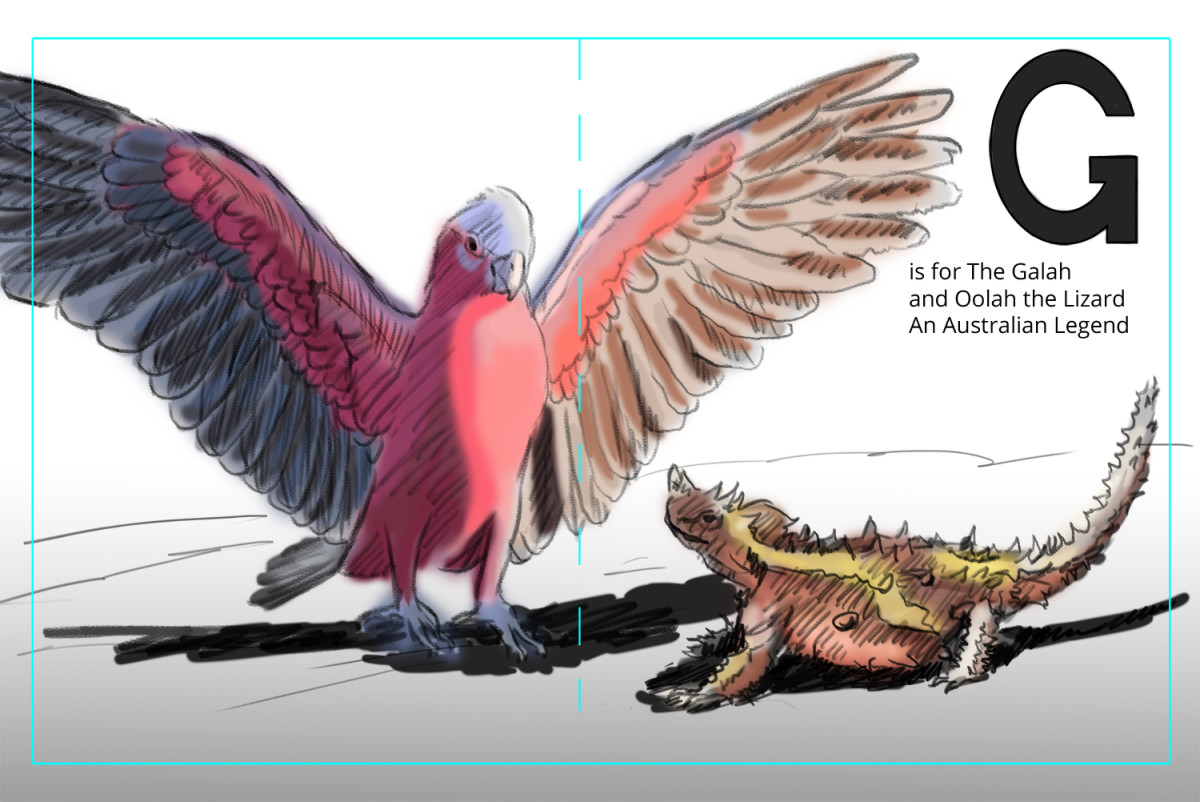 Color Composition for the illustration