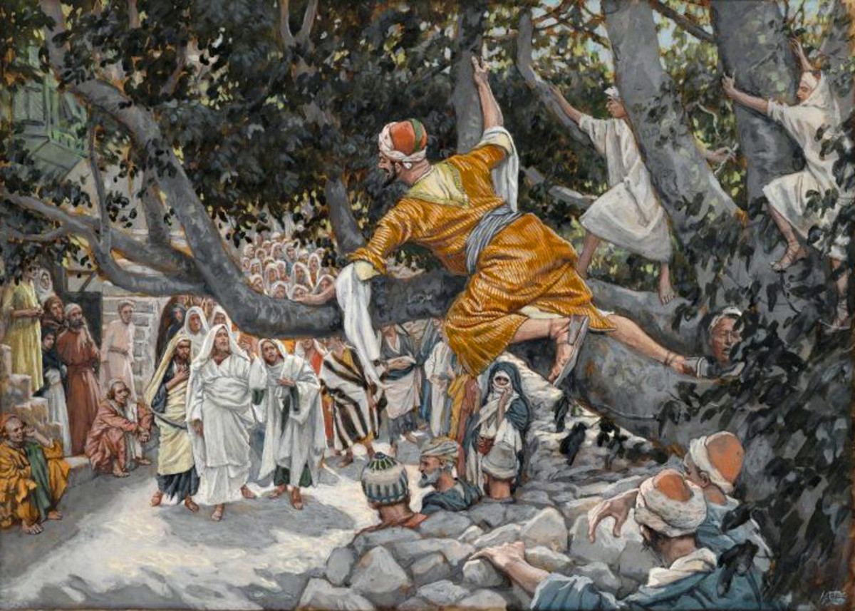 zacchaeus-and-the-sycamore-tre