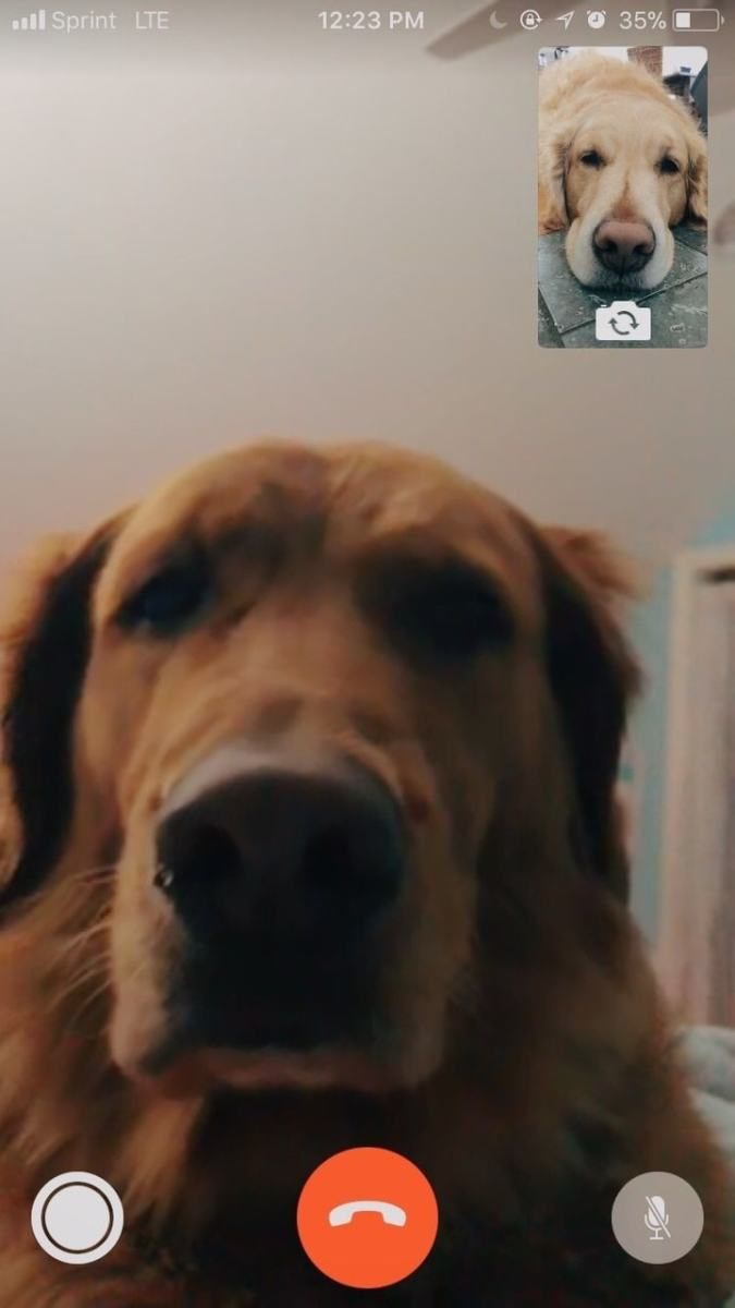 just two bffs facetiming each other