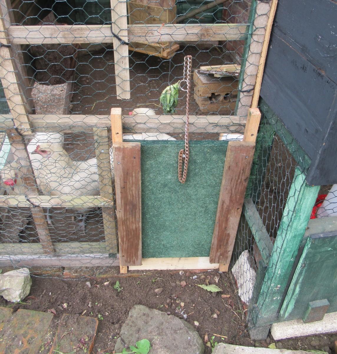 Chicken Escape!