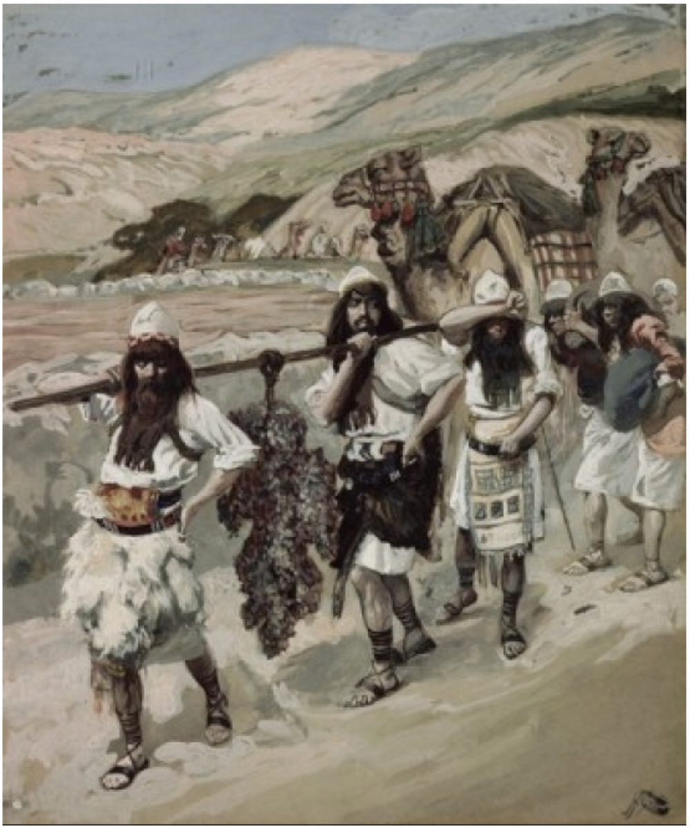 Canaan's descendants ended up settling on some of the best lands on earth.  The land's grapes grew so large that it took two men to carry one cluster.  The Canaanites' disgusting sins caused God to use the Israelites to drive them out of the area.