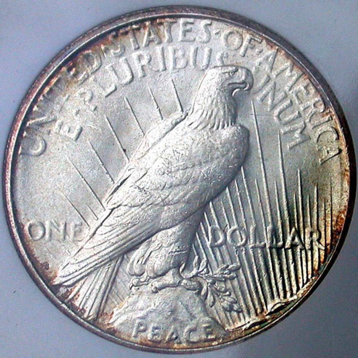 1922 S Peace Dollar Reverse Toned. Mintmark can be observed near the tail feathers. Photo Courtesy: coinpage.com