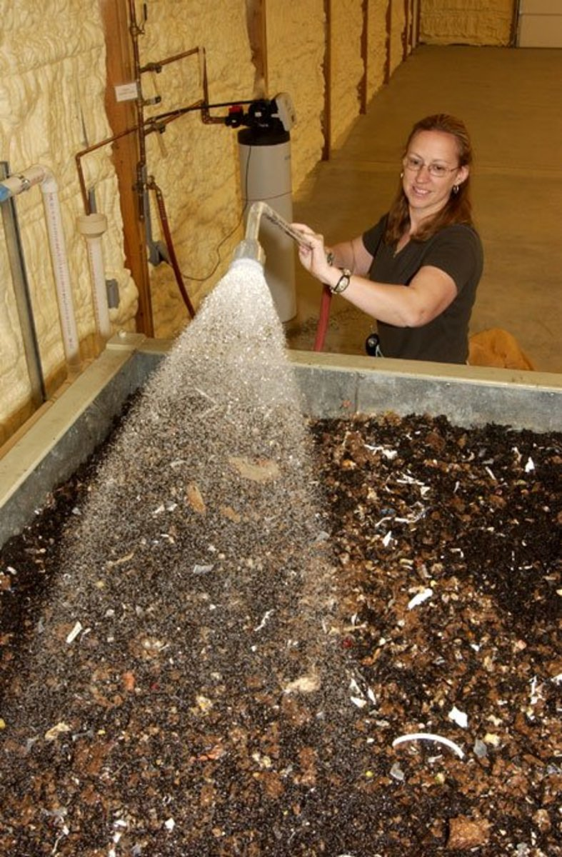 how to start a commercial worm farm