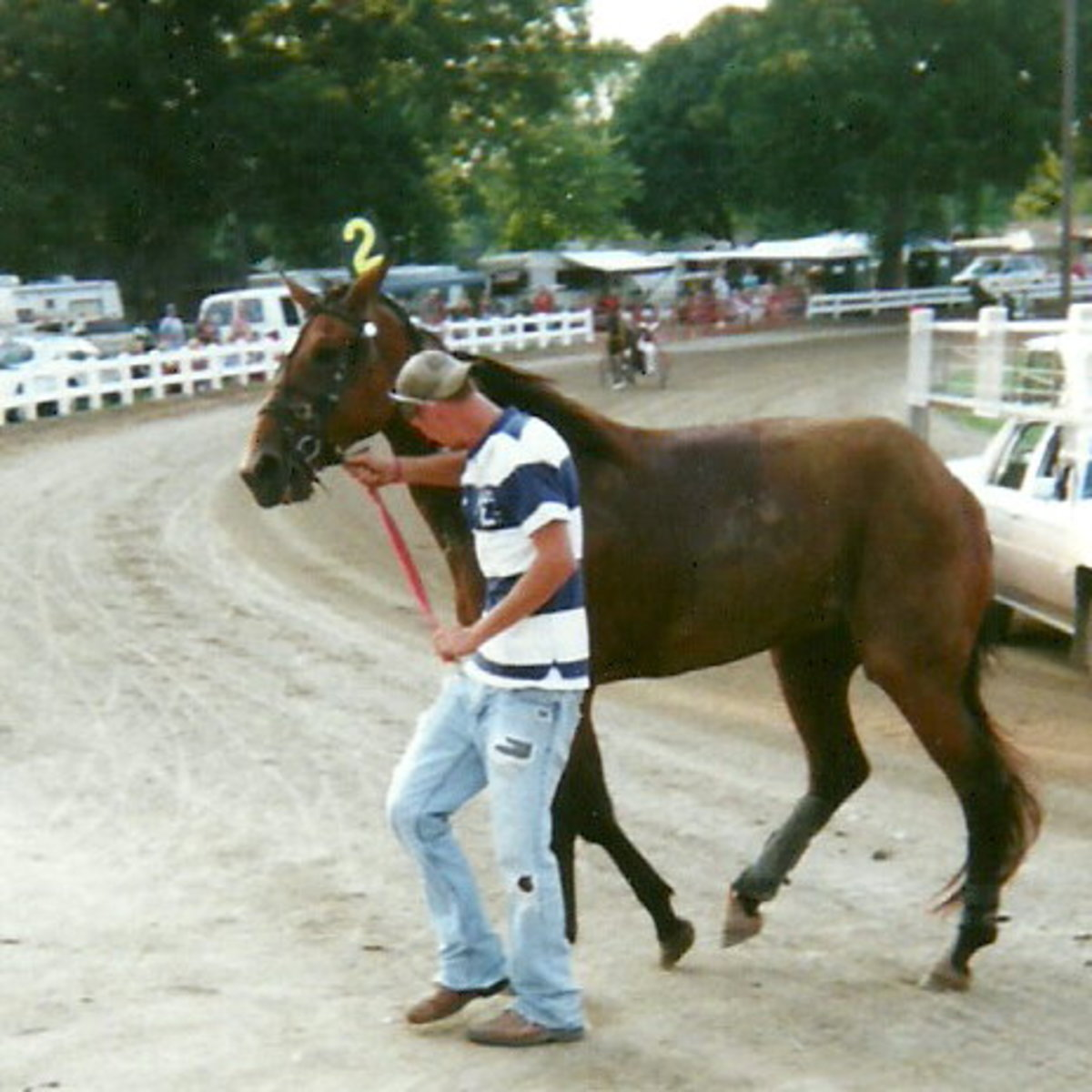 After the horrific flip in her first start and first time away from home, Wonder Buns, owned by Sharon E. Steinke of Pioneer, Ohio, is scratched and leaves the track in a subdued walk.