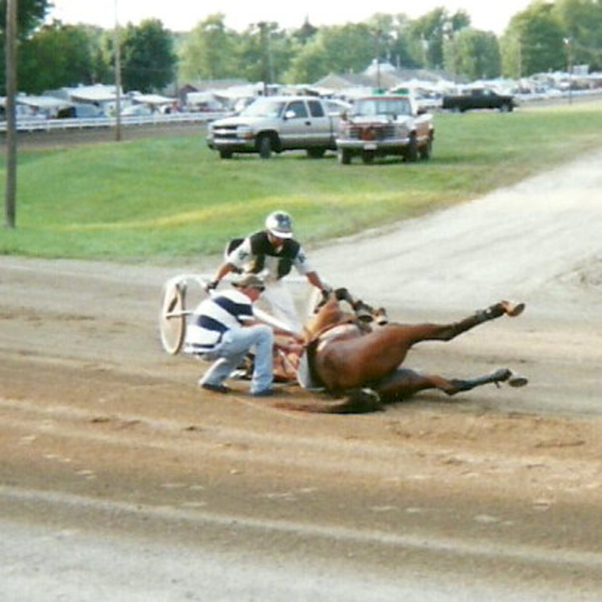 Wonder Buns was the poor Little Filly Who Couldn't on August 17, 2011 at the Henry County Fair in Napoleon, Ohio.