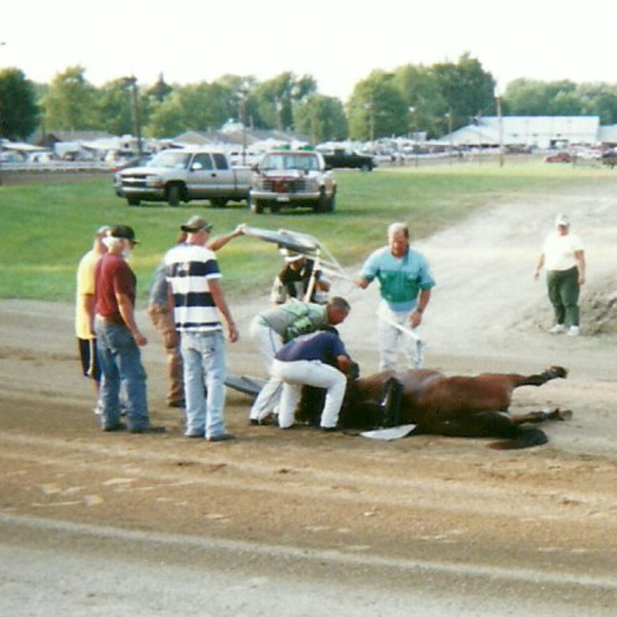 Fill-in Driver Randy Bates was able to jump ship from the sulky as Wonder Buns reared in the harness and flipped backwards to the ground.