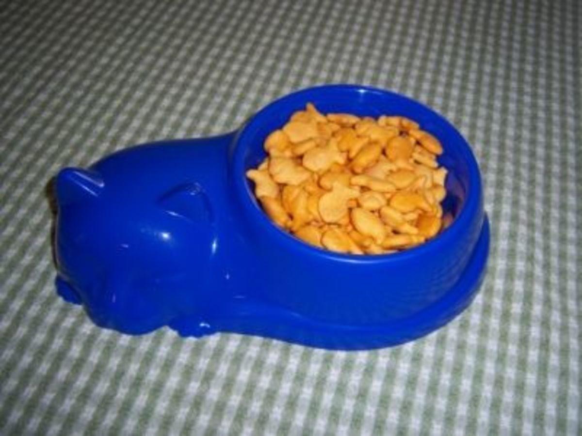 Goldfish in Cat Dish