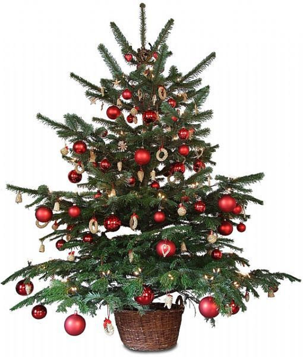 Deck The Halls From Porch To Treetop - Christmas Lights, Christmas Tree Toppers & Christmas Angels