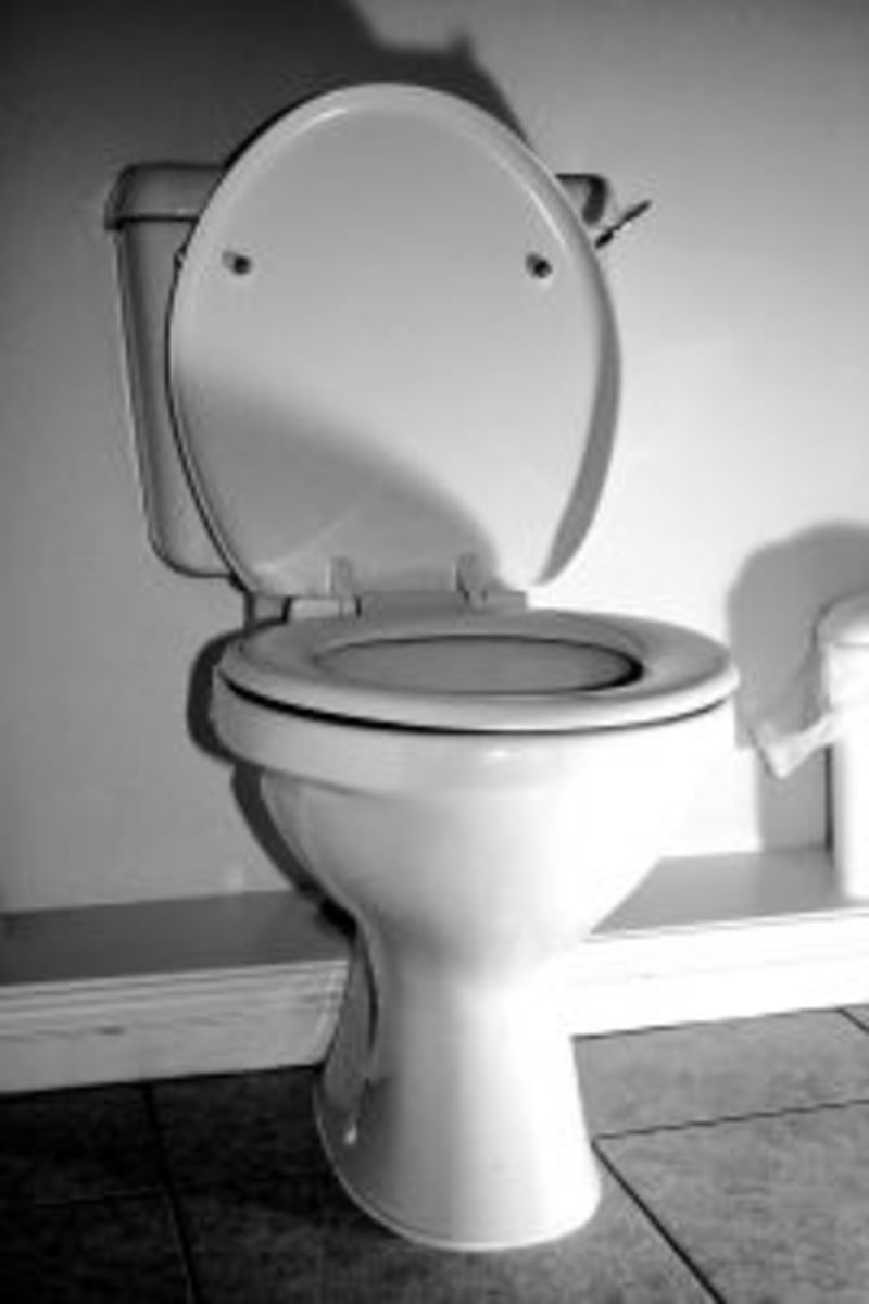 You'll need better light than this for installing a toilet