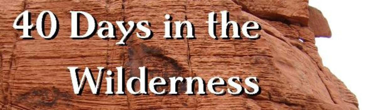 40 Days in the Wilderness - A Bible Discussion Guide for Lent