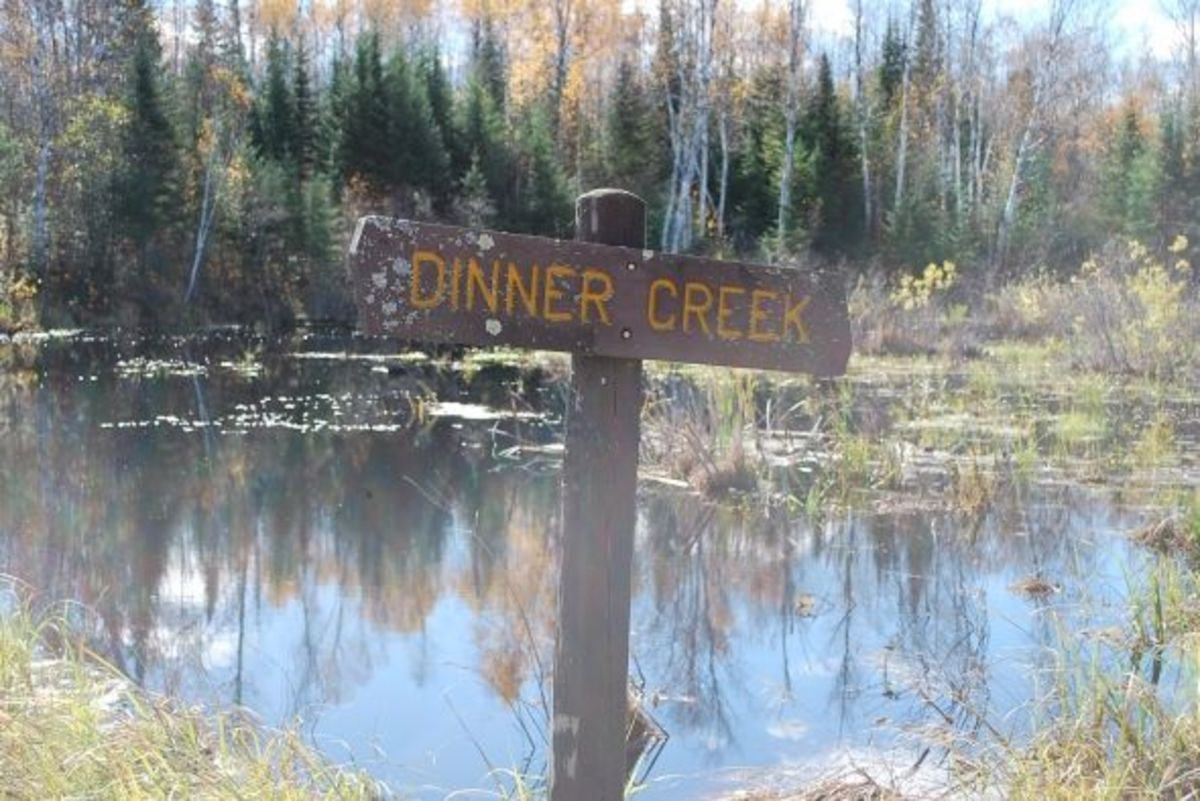 Dinner Creek
